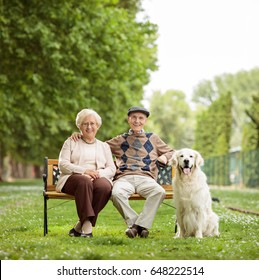 Happy elderly couple with a dog sitting on a bench in the park