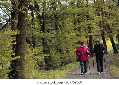 Happy elderly couple in love engaged in Nordic walking going in the nature. Concept of active elderly people during retirement. Everyday joy lifestyle without age limitation.