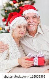 Happy elderly couple on the couch at christmas with gift