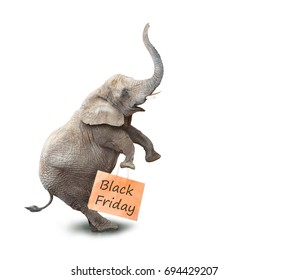 Happy elephant going to supermarket in Black Friday for low cost shopping. Funny icon on white background.