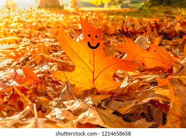 A happy face drawn on golden autumn sycamore leaf on the ground around many more leaves on a sunny October day