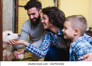 Happy family at animal shelter choosing a dog for adoption.