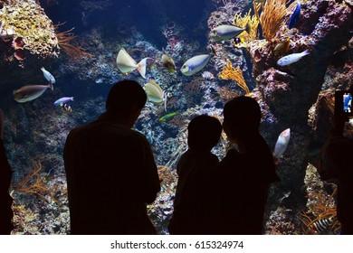 Happy Family in Aquarium
