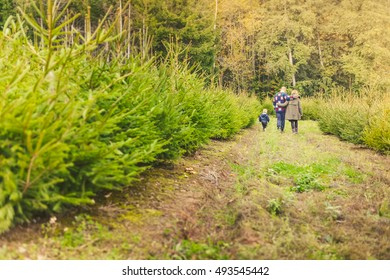 Happy Family with Child Choosing the Christmas Tree at the Farm. Happy family enjoying Christmas outdoors.