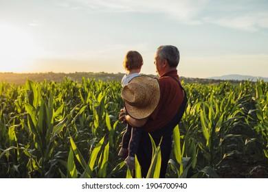Happy family in corn field. Family standing in corn field an looking at sun rise - Shutterstock ID 1904700940
