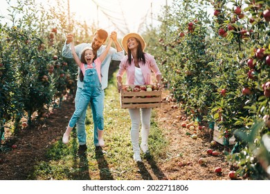 Happy family enjoying together while picking apples in orchard.