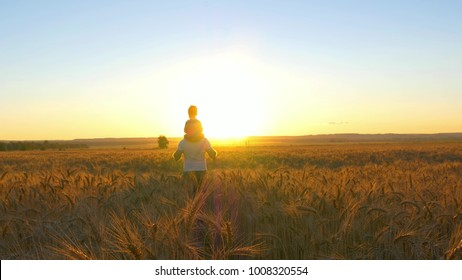 happy family, father holding a son on his shoulders, who walk in the wheat field and watch the sunset - 3