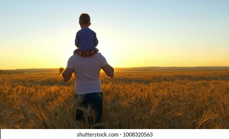 happy family, father holding a son on his shoulders, who walk in the wheat field and watch the sunset - 2