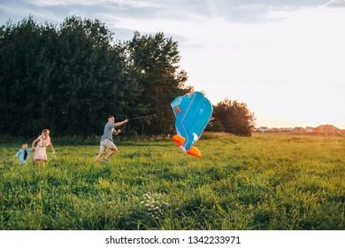 Happy family father, mother and child son launch a kite on nature at sunset
