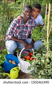 Happy family with harvest of vegetables in the garden