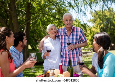 Happy family having red wine in park on a sunny day