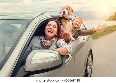Happy family look out from car windows