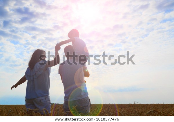 Happy family. Mom dad and son look at the sun in the wheat field. Back view.