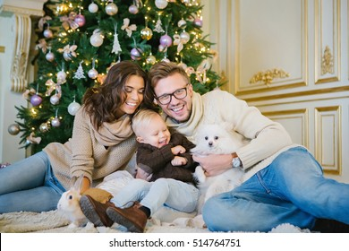 Happy family - mother, father and son sitting under the Christmas tree along with the rabbit and a small dog