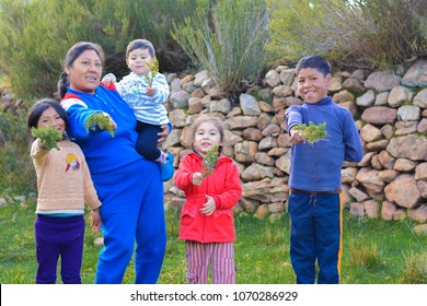 Happy family of native american people showing typical peruvian plant called tipollo.
