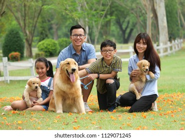 Happy family playing with a cute golden retriever dog in the park.