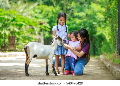 Happy family playing with goats