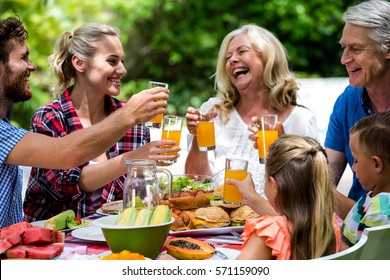 Happy family toasting drinks while having lunch at lawn