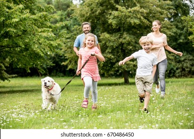 Happy family with two children and dog having fun in summer in the meadow