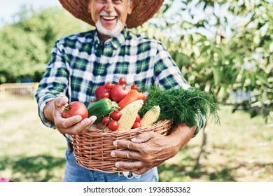 Happy farmer with a basket full of seasonal vegetables