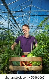 Happy farmer with vegetable box in a greenhouse