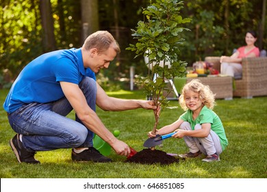Happy father and his little son planting a small tree