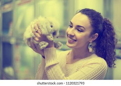 happy female customer watching fluffy chinchilla in petshop