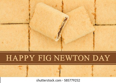 Happy Fig Newton Day greeting, Fig Newtons top view with text Happy Fig Newton Day