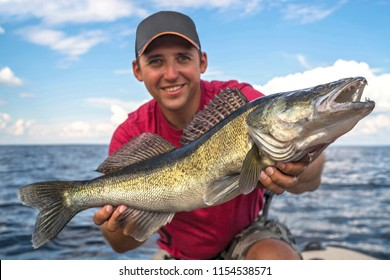Happy fisherman with big walleye zander fish trophy at the boat