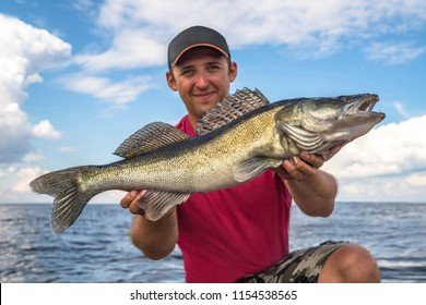 Happy fisherman with big zander walleye fish trophy at the boat