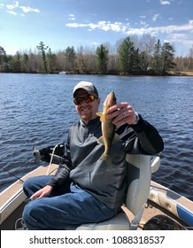 Happy fisherman holding up a Walleye while in a boat on the lake