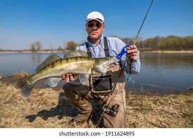 Happy fisherman with zander fish. Success walleye fishing at wild river