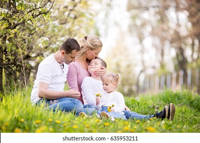 Happy four member family spending spring afternoon together outdoors in orchard, sitting in a grass, mother kissing son on his forehead, little girl holding a dandelions