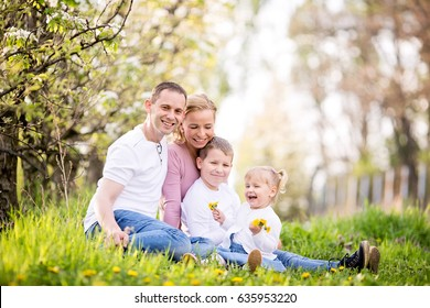Happy four member family spending spring afternoon together outdoors in orchard, sitting in a grass full of dandelions, smiling and laughing
