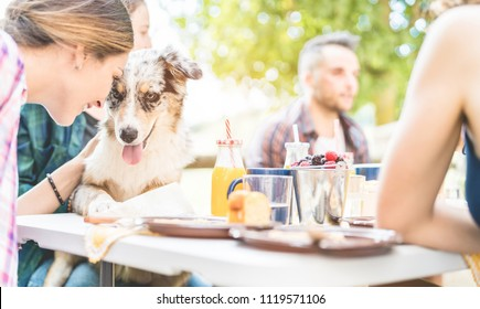 Happy friends doing breakfast brunch meal in nature with home pet - Young people having fun with dog in weekend day eating fruits and drinking smoothie - Focus on animal face - Food and summer concept