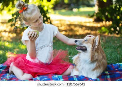happy fun holidays - beautiful blond girl and corgi fluffy  on the lawn on a sunny summer day