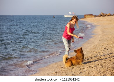 happy fun weekend by the sea - girl playing with a dog on the beach. Summer