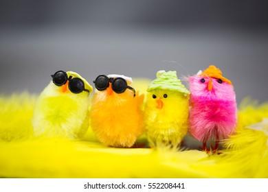 happy funny chicks on yellow underground