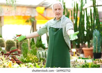 Happy gardener in a greenhouse