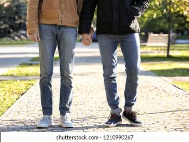 Happy gay couple walking in park