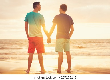Happy gay couple watching sunset on the beach