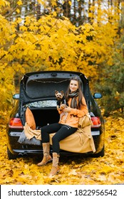 Happy girl and dog sitting in the trunk of a car in nature. Friendship of a man and a dog, travel, camping on an autumn background. Moment of happiness