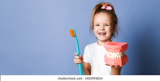 Happy girl kid and big dental implant model with toothbrush standing laughing on purple background. Banner