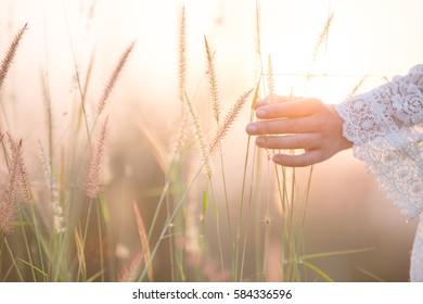 Happy girl in the meadow,Joy , sunlight , wheat.