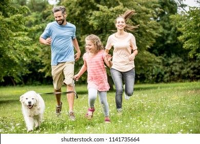 Happy girl with parents walking the dog in a meadow