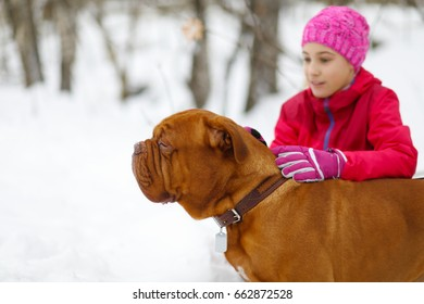 Happy girl plays with brown dog on snow at winter in park, focus on animal