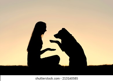 a happy girl is sitting outside in the grass, shaking hands with her German Shepherd dog, silhouetted against the sunsetting sky