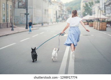 Happy girl in a skirt runs with two dogs on the roadway. Back view