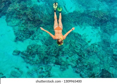 Happy girl in snorkeling mask dive underwater with tropical fishes in coral reef sea pool. Travel lifestyle, water sports, outdoor adventure, swimming lessons on family summer beach holiday with kids