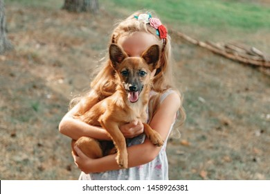 Happy girl take a dog from shelter.  Animal care concept